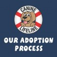 Thank you for your interest in adopting a dog from Canine Lifeline! Our dogs are strays that were saved from euthanasia at dog shelters due...