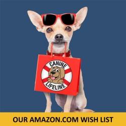 2016-AmazonWishList