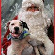 It's that time again! Please join us for our annual Pet Photos with Santa on Sunday, December 4th, from 11 am to 2 pm at […]