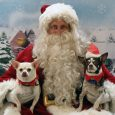 Celebrate the season with Canine Lifeline by having holiday portraits taken of you and your pets. The event takes place on Sunday, December 2nd from 11 am – 2 pm at the Macedonia Veterinary Clinic – 517 E. Highland Rd, […]