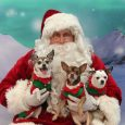 Celebrate the season with Canine Lifeline by having holiday portraits taken of you and your pets. The event takes place at the Macedonia Veterinary Center (517 E. Highland Rd, Macedonia) on: Saturday, December 7th from 1 pm – 4 pm […]